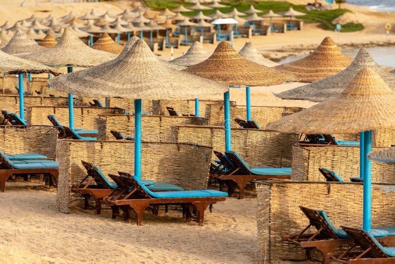 Solstolar och Straw Beach Umbrellas - Röda havet Egypten arkivbild