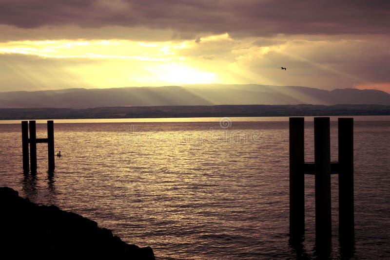 Solstrålar på sjön royaltyfri bild