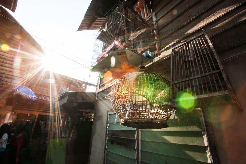 Solstrålar som skiner till och med en trähus- och fågelbur på solnedgången, fantastisk linssignalljus Enkel livstil på Narathiwat arkivfoton