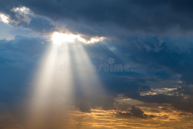Solstrålljus igenom ner royaltyfria foton