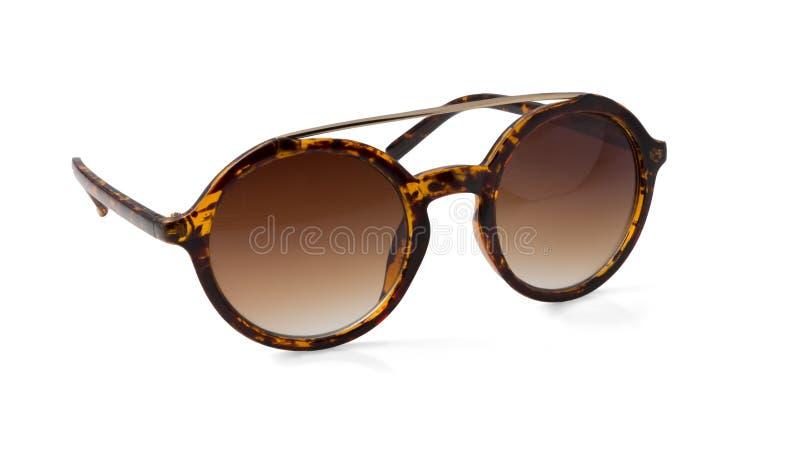 Soltse hermoso de las gafas de sol fotografía de archivo libre de regalías