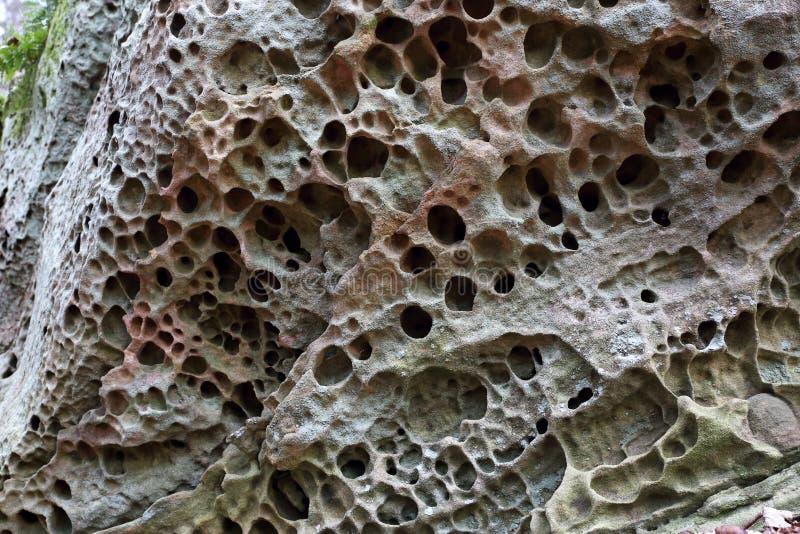 Solução diferencial de uma rocha da pedra calcária fotos de stock