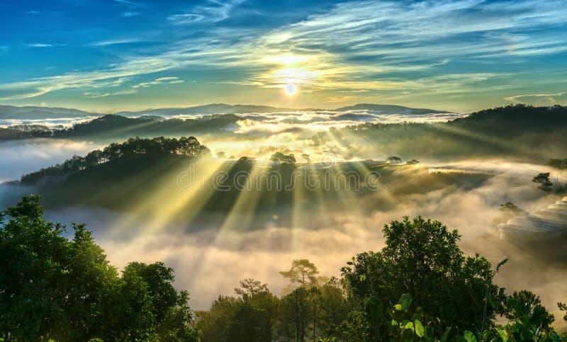 Soluppgång över backen som en pinjeskog med långa solstrålar passerar till och med dalen med, sörjer gula soliga morgnar detta me royaltyfri fotografi