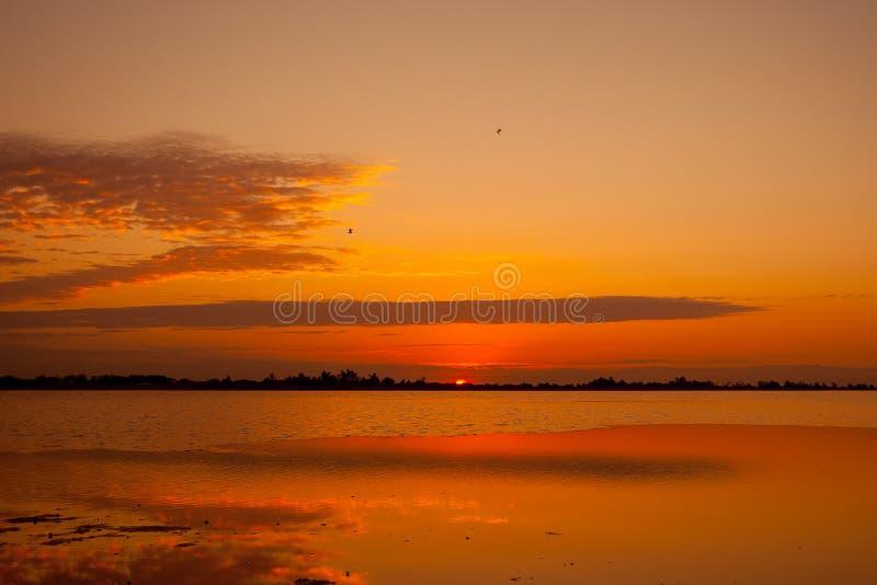 Soluppgång över breda flodmynningen royaltyfri bild