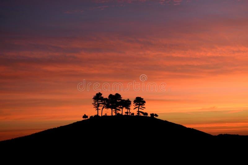 Soluppgång över Colmer& x27; s-kulle arkivbild