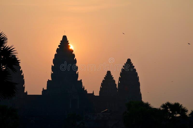 Soluppgång över den Angkor Wat templet royaltyfri fotografi