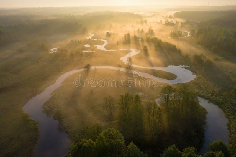 Soluppgång över den dimmiga floden från över Ljusa solstrålar på den dimmiga floden på äng Flyg- sikt för sommarnatur royaltyfria bilder