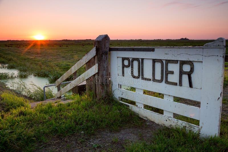 Soluppgång över en holländsk polder royaltyfri bild