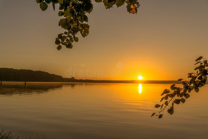 Soluppgång över en sjö med sidor av träd royaltyfri fotografi