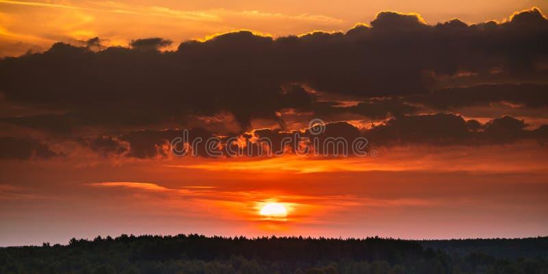 Soluppgång över Forest Landscape Scenisk sikt av solnedgånghimmel med solen royaltyfri foto