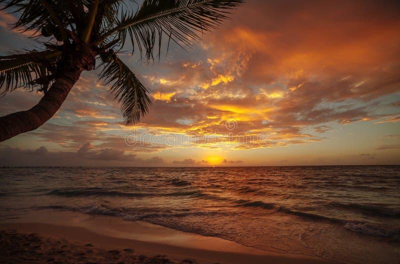 Soluppgång över havet i Cancun mexico arkivbild