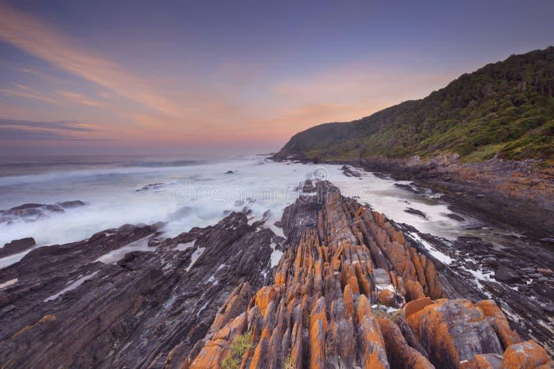 Soluppgång över havet i den trädgårds- rutten NP, Sydafrika royaltyfria foton