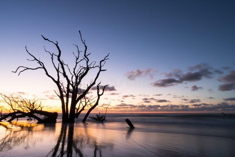 Soluppgång över havet med stranden och träd arkivbilder