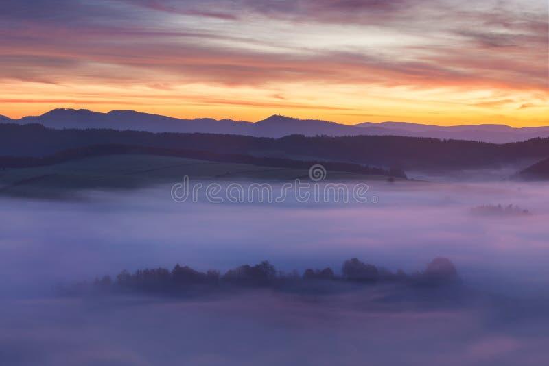 Soluppgång över Misty Landscape Scenisk sikt av dimmig morgonhimmel med resningsolen ovanför Misty Forest Middle Summer Nature Of royaltyfria bilder