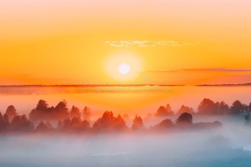 Soluppgång över Misty Landscape Scenisk sikt av dimmig morgonhimmel W arkivfoton
