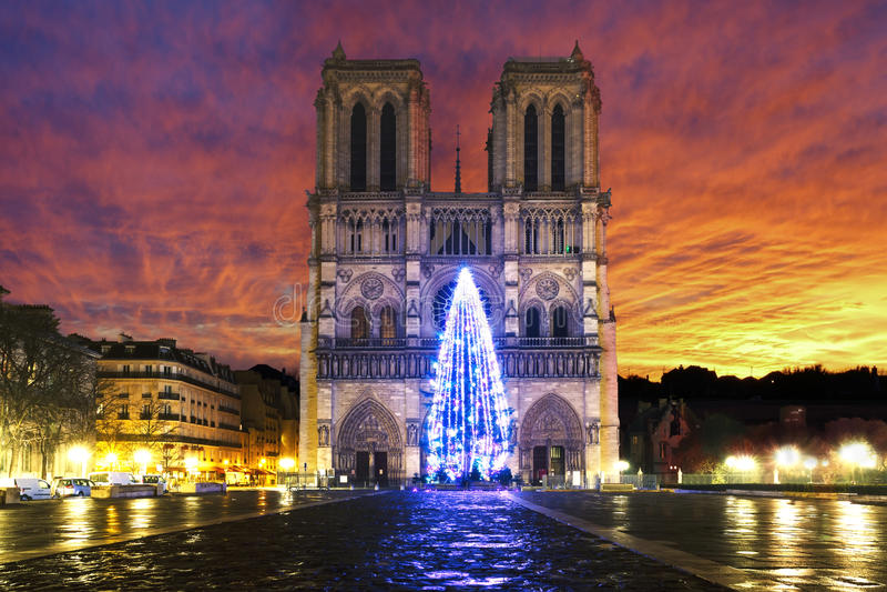 Soluppgång över Notre Dame de Paris arkivfoto