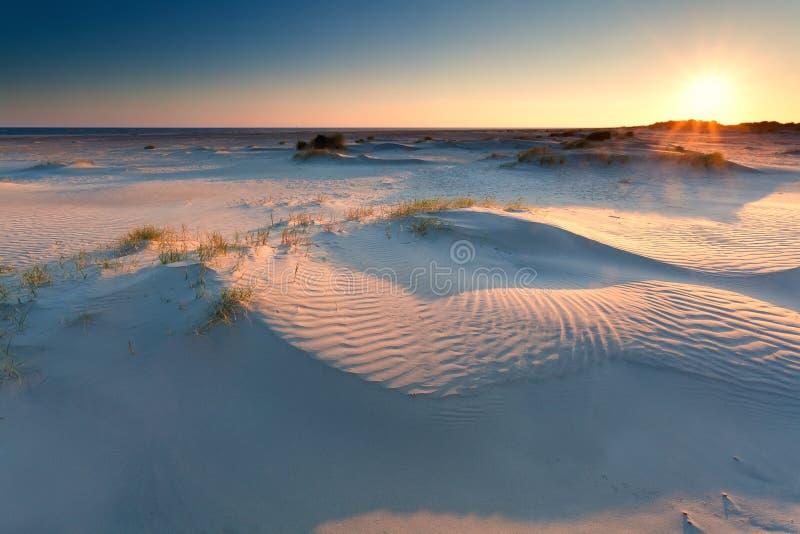 Soluppgång över sanddyn på Nordsjönstranden royaltyfria bilder
