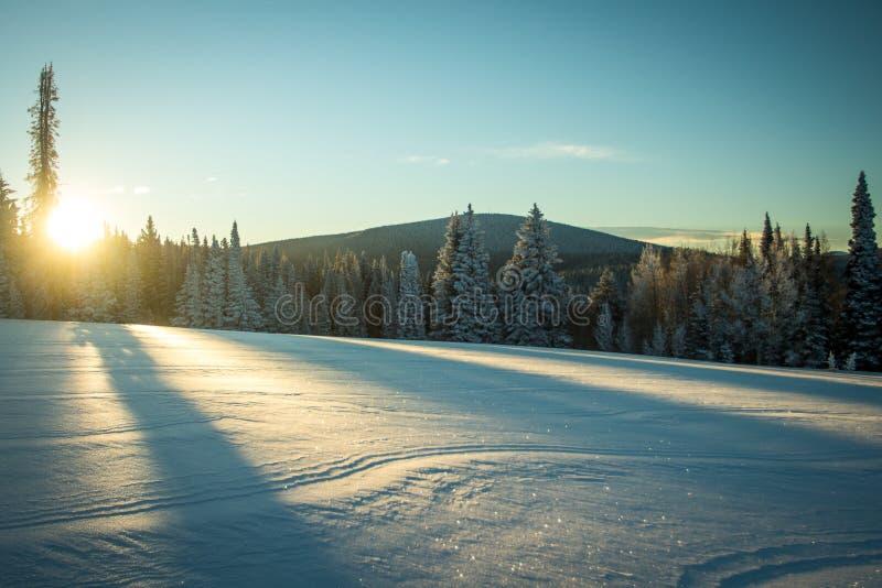 Soluppgång över snöig fält, kaninöron passerar, Steamboat Springs, Colorado royaltyfri foto
