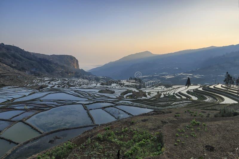 Soluppgång över YuanYang ris terrasserar i Yunnan, Kina, en av de senaste UNESCOvärldsarven royaltyfria foton
