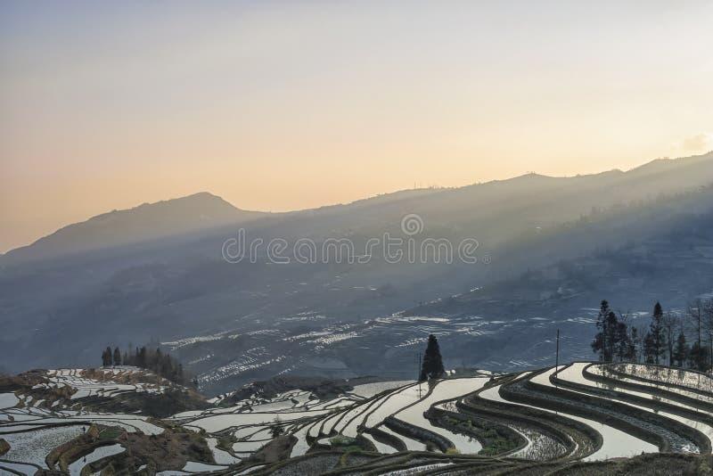 Soluppgång över YuanYang ris terrasserar i Yunnan, Kina, en av de senaste UNESCOvärldsarven arkivfoto