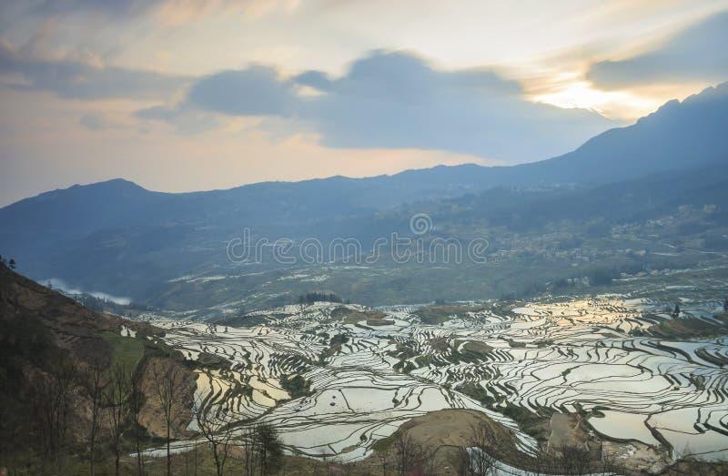Soluppgång över YuanYang ris terrasserar i Yunnan, Kina, en av de senaste UNESCOvärldsarven arkivfoton