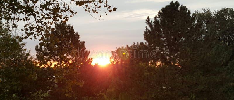 Soluppgång! arkivbild