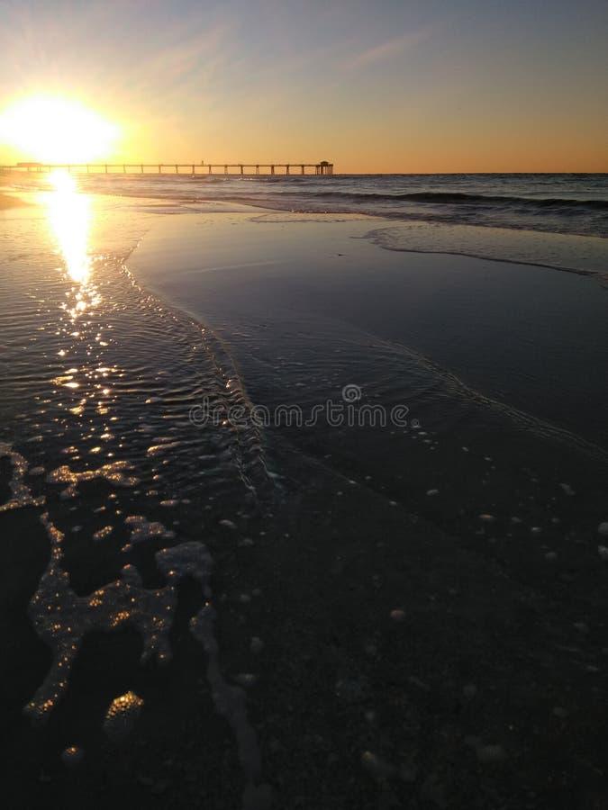 Soluppgång för sanddollar arkivbilder