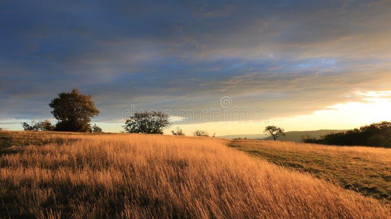 Soluppgång i bergen, skog, blå himmel 3 royaltyfri bild
