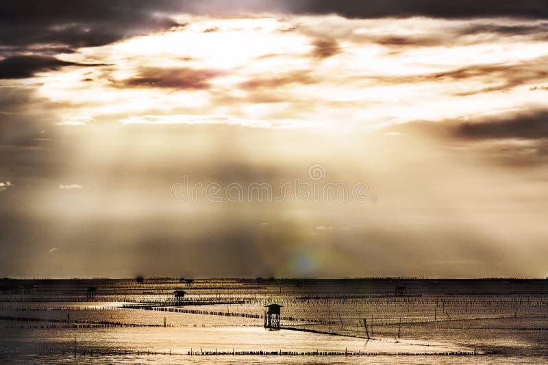 Soluppgång i havet royaltyfria foton