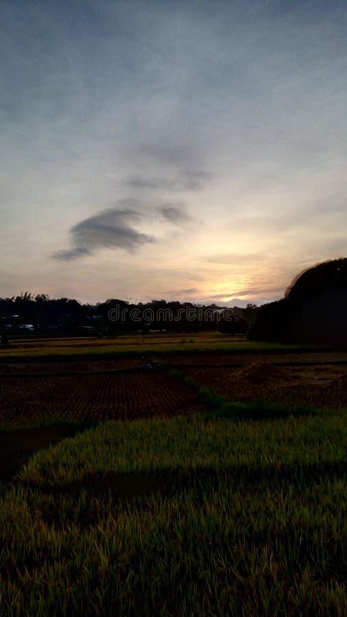 Soluppgång i lantgården royaltyfri fotografi