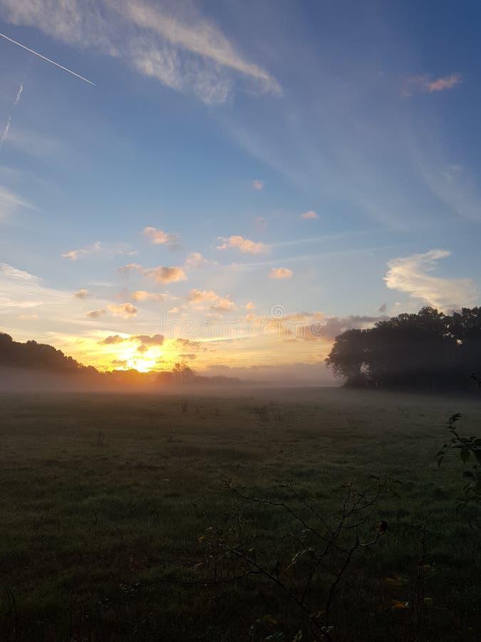 Soluppgång i lantliga Sussex fotografering för bildbyråer