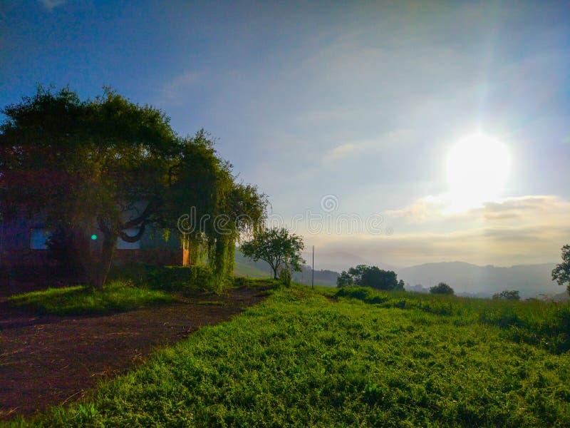 Soluppgång i morgonen i en härlig jordbruksmark för grönt gräs med arkivbild