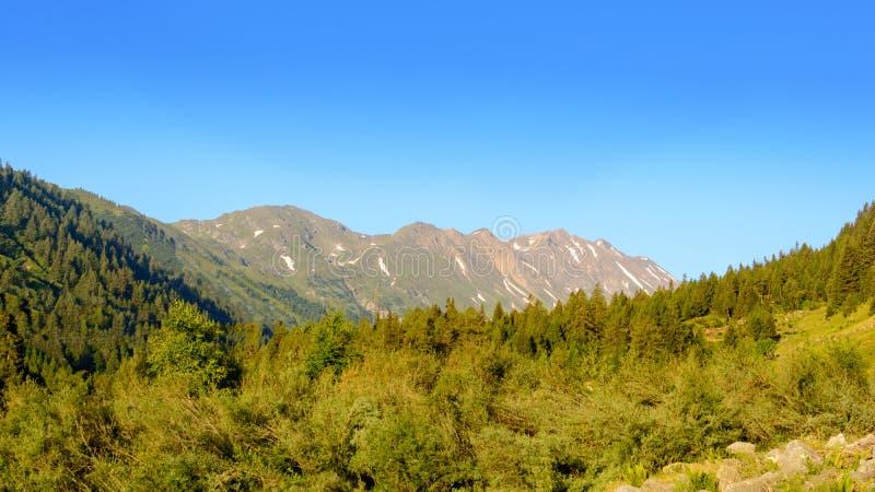Soluppgång i Ticino i de schweiziska bergen royaltyfria foton