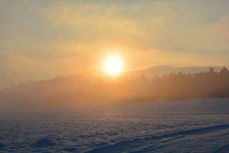 Soluppgång i vintern arkivbild