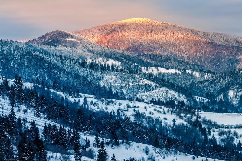 Soluppgång i vintern carpathians royaltyfri fotografi