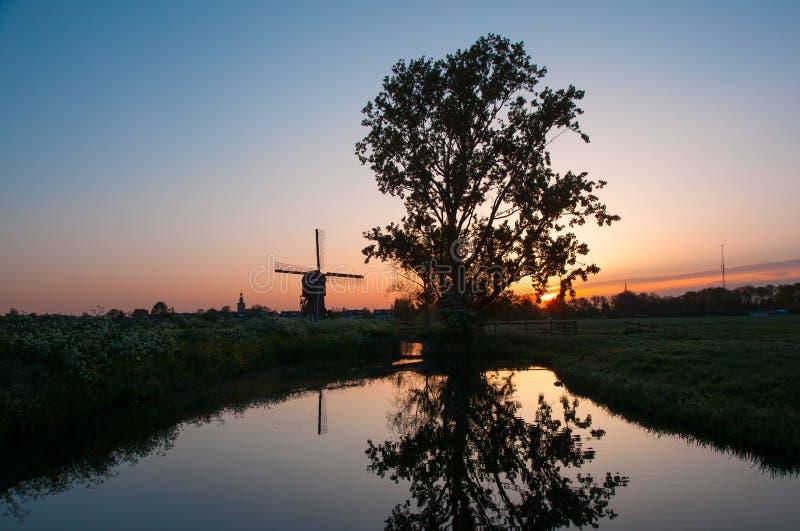 Soluppgång med det gamla trädet och holländareväderkvarnen reflekterade i vattnet arkivfoto