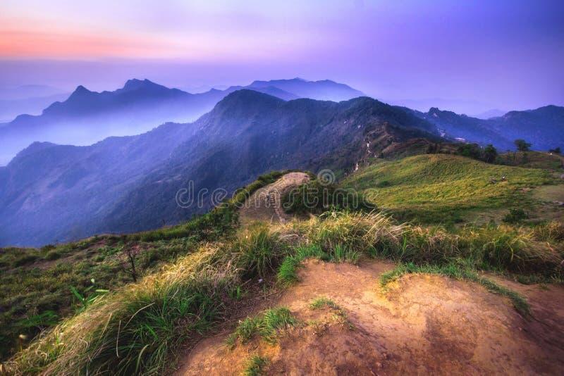 Soluppgång och berghav av dimma på den Phu chifa i Chiangrai arkivfoto