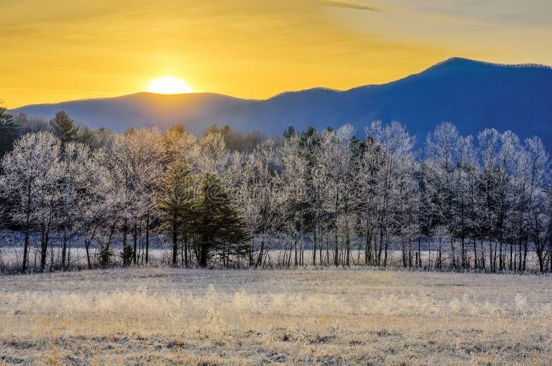 Soluppgång och frost, Cades liten vik, rökiga berg royaltyfri fotografi