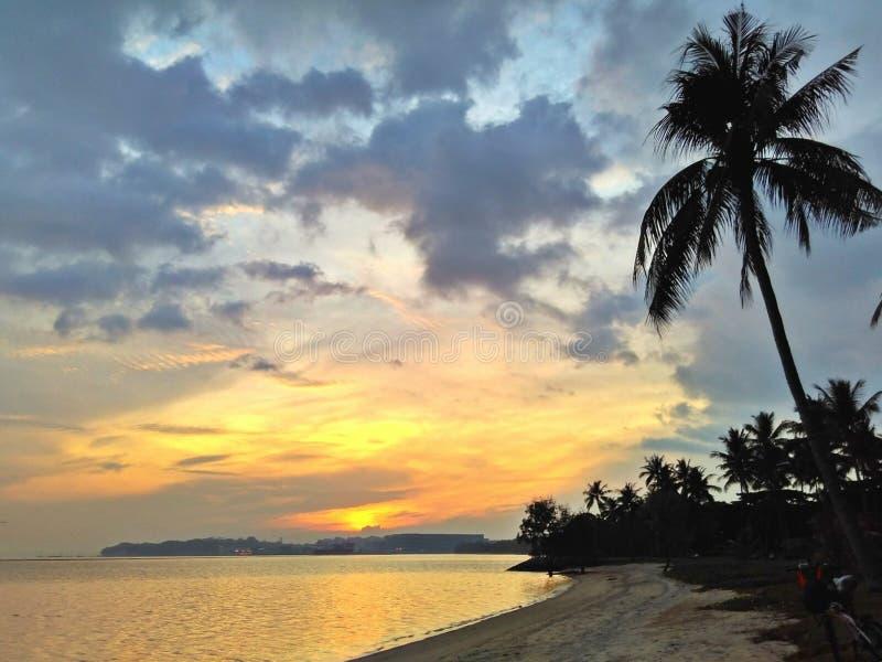 Soluppgång på den tropiska stranden royaltyfri bild