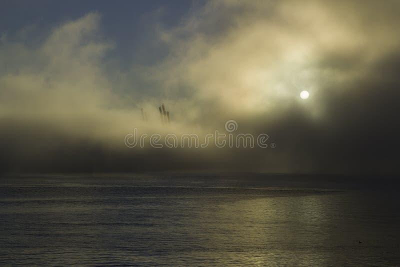 Soluppgång på en dimmig morgon på porten av Vancouver royaltyfri fotografi