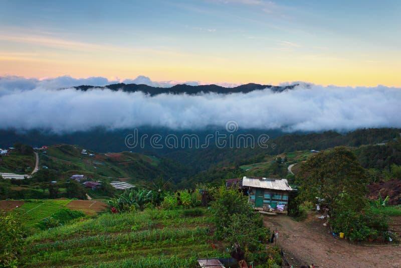 Soluppgång på högland i Borneo, Sabah, Malaysia arkivfoton
