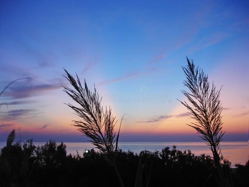Soluppgång på havet arkivbild