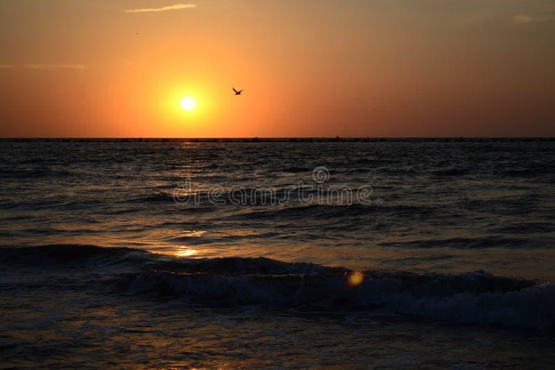 Soluppgång på havslandskapet arkivbild