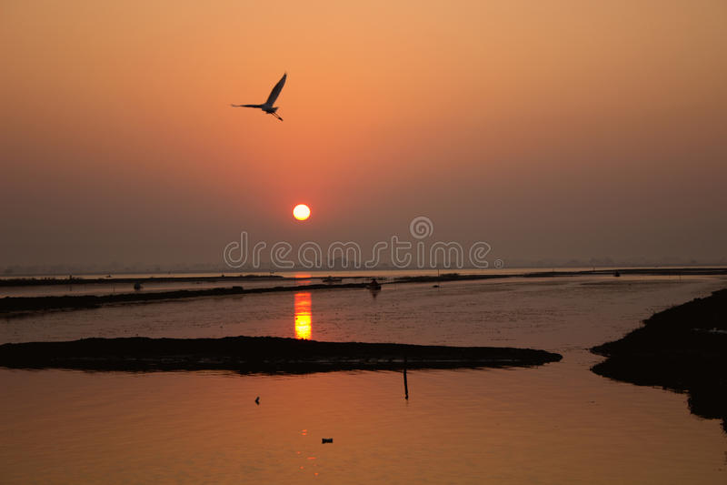 Soluppgång på laken arkivfoton