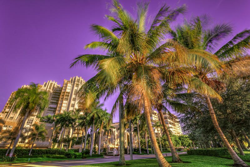 Soluppgång på Naples, Florida royaltyfri bild