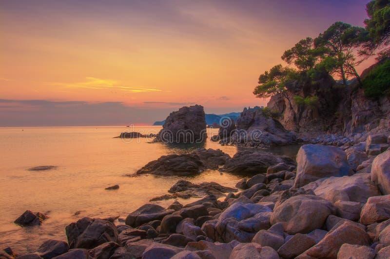 Soluppgång på sjösidan i Ibiza Spansk natur på gryning royaltyfri bild