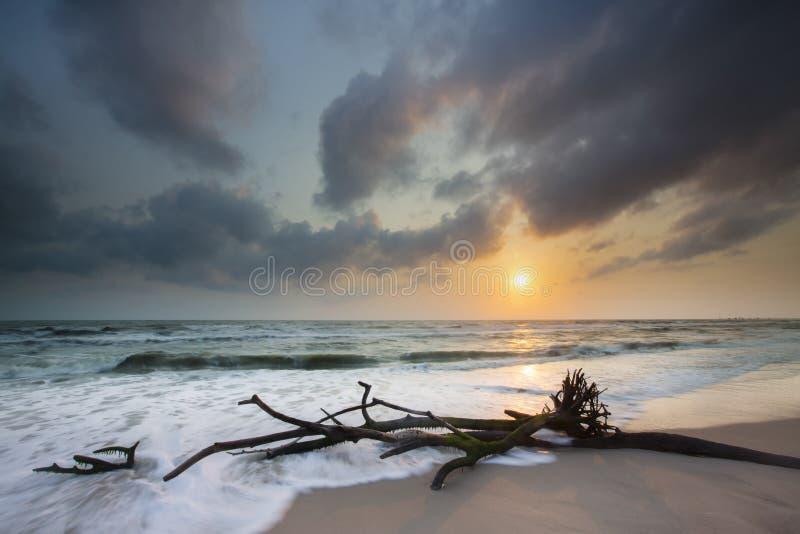 Soluppgång på strand arkivfoton