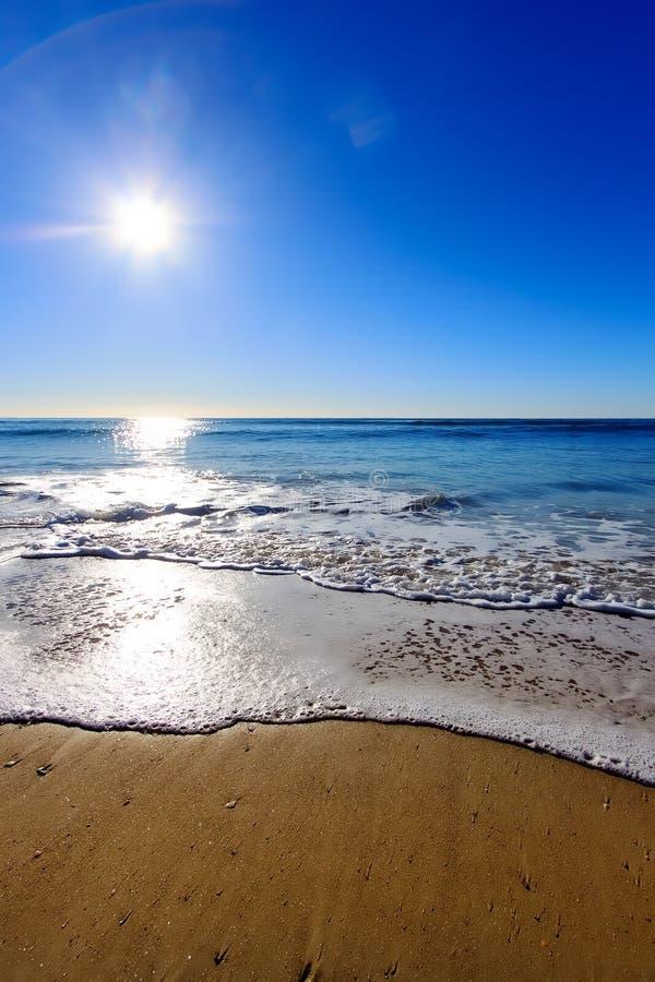 Soluppgång på stranden royaltyfri foto