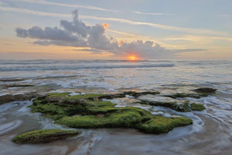 Soluppgång på Washington Oaks Beach royaltyfri fotografi