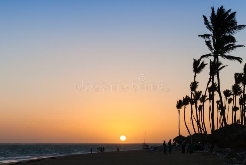 Soluppgånglandskap på den Atlantic Ocean kusten med palmträd arkivbilder